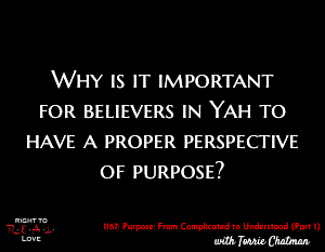 Purpose: From Complicated to Understood (Part 1)